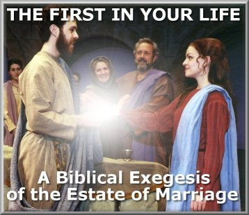 All you ever wanted to know about the biblical doctrine of marriage